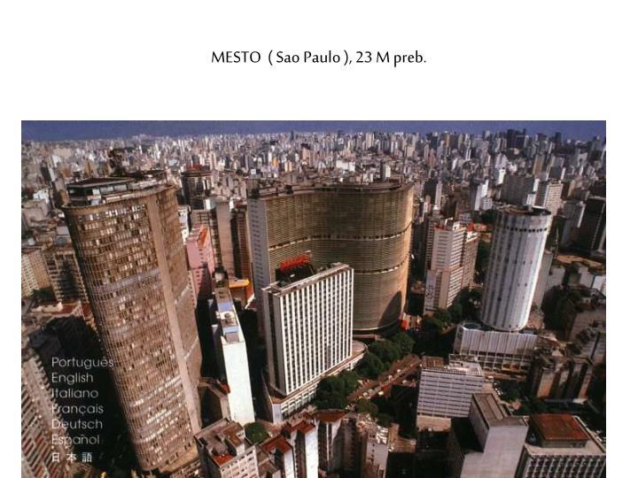 MESTO  ( Sao Paulo ), 23 M preb.