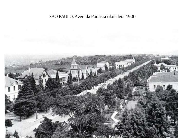 SAO PAULO, Avenida Paulista okoli leta 1900