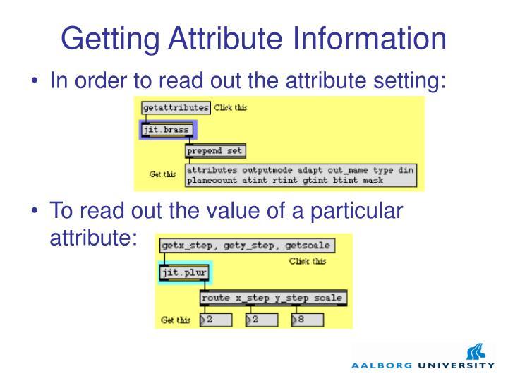 Getting Attribute Information