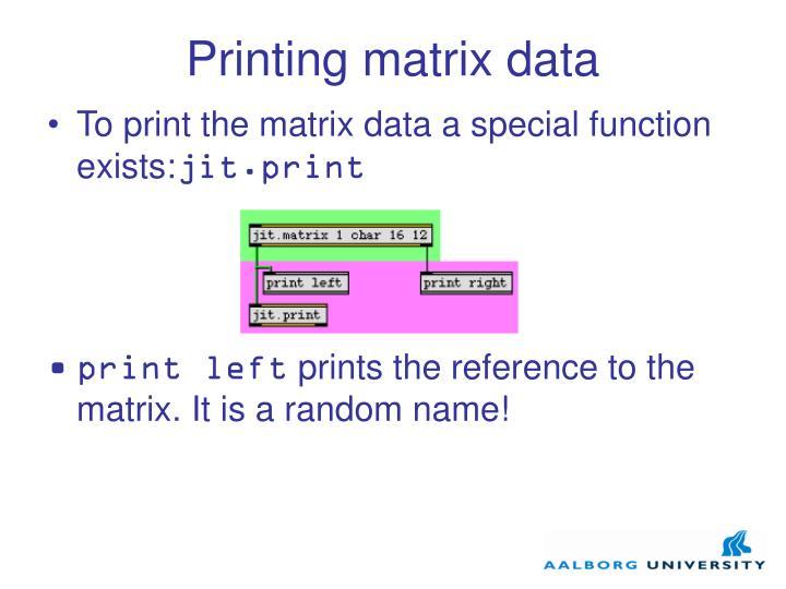 Printing matrix data