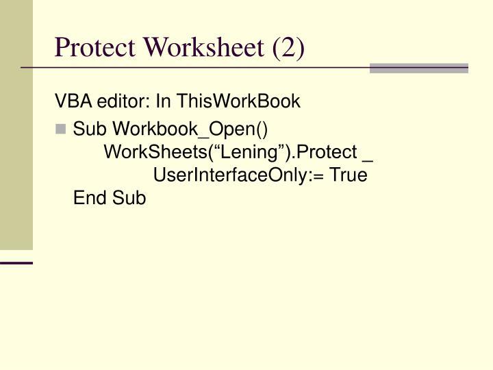 Protect Worksheet (2)