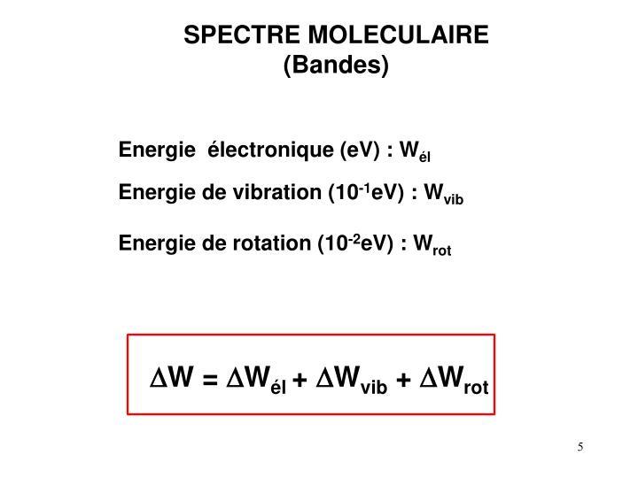 SPECTRE MOLECULAIRE