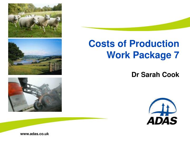 Costs of production work package 7