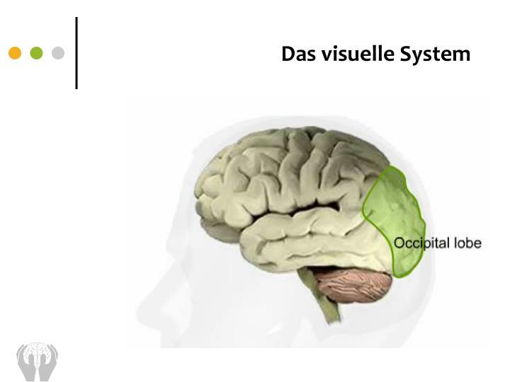Das visuelle System