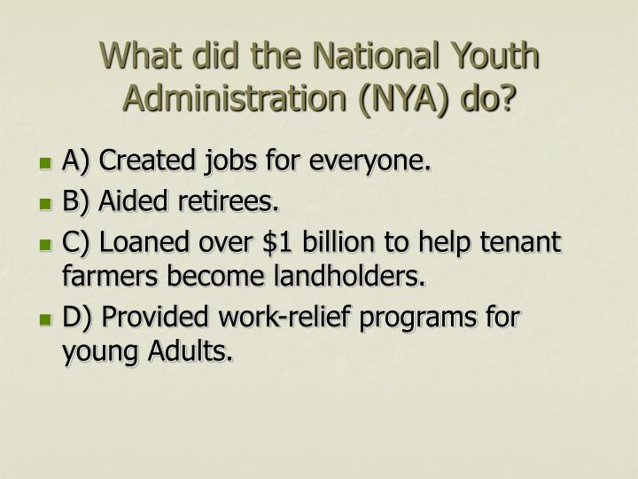 What did the National Youth Administration (NYA) do?