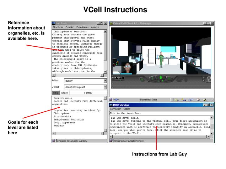 VCell Instructions