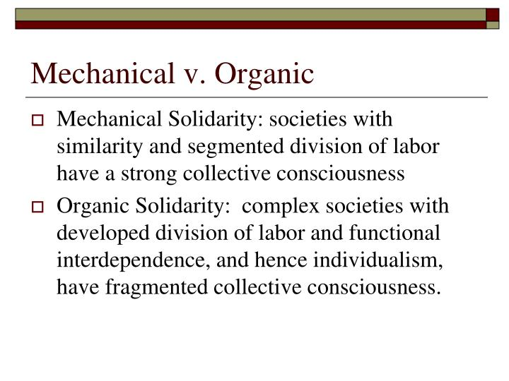 what is mechanical solidarity in sociology