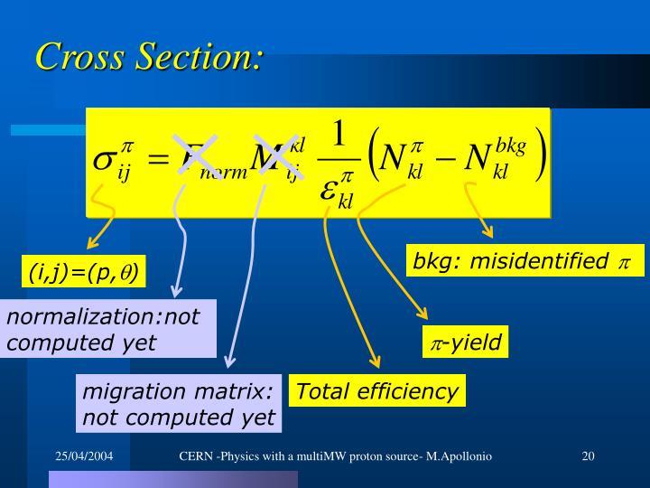 Cross Section: