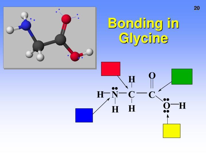 Bonding in Glycine