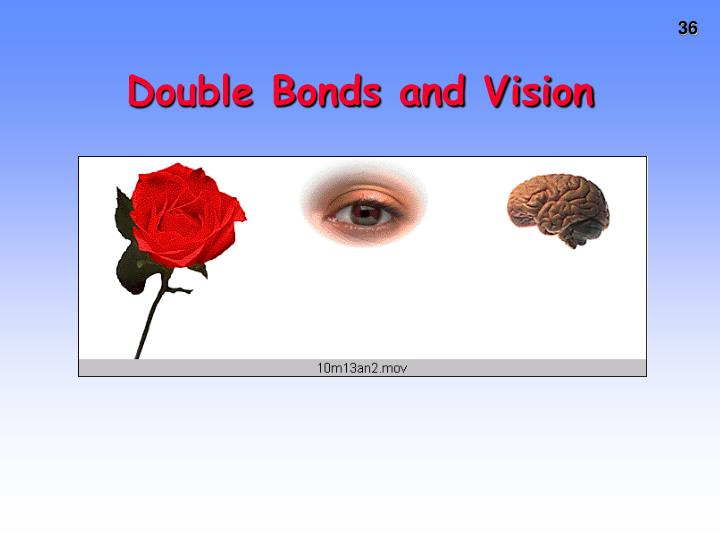 Double Bonds and Vision