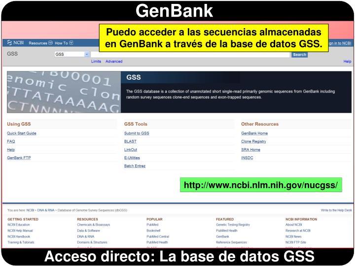 Puedo acceder a las secuencias almacenadas en GenBank a través de la base de datos GSS.