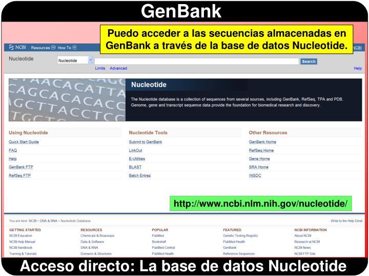 Puedo acceder a las secuencias almacenadas en GenBank a través de la base de datos Nucleotide.