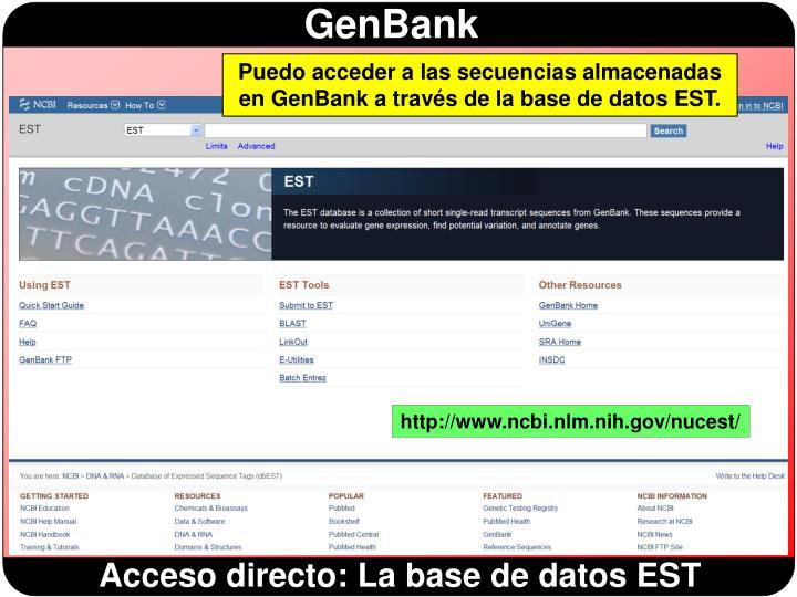 Puedo acceder a las secuencias almacenadas en GenBank a través de la base de datos EST.