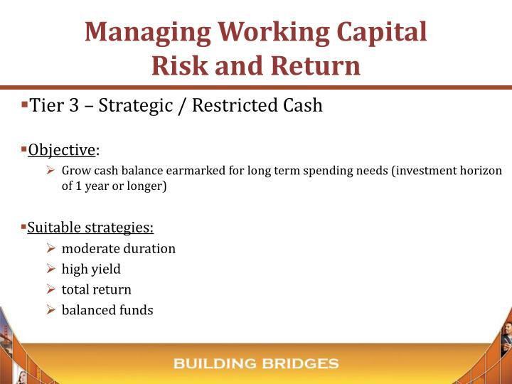 Tier 3 – Strategic / Restricted Cash