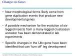 changes in genes