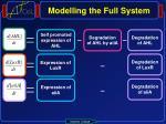 modelling the full system1