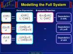 modelling the full system3