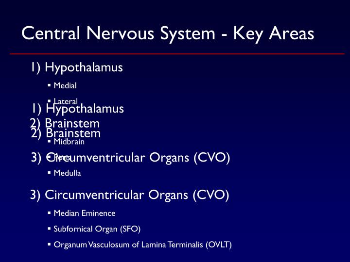 Central Nervous System - Key Areas