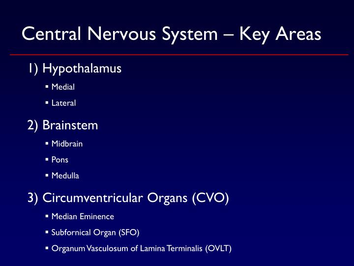 Central Nervous System – Key Areas