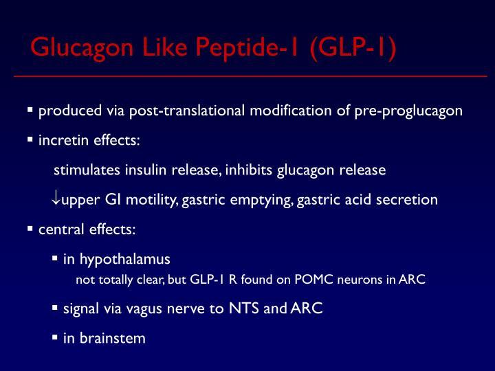Glucagon Like Peptide-1 (GLP-1)