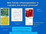 new trends inhomogeneities in cuprates are stripes universal