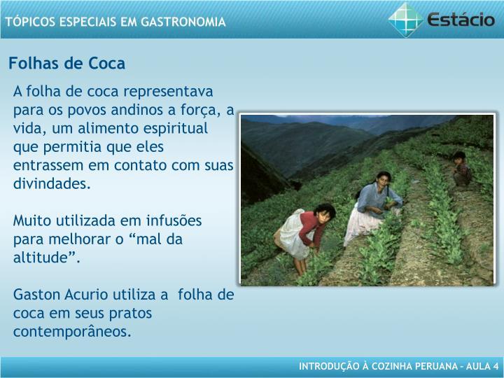 Folhas de Coca