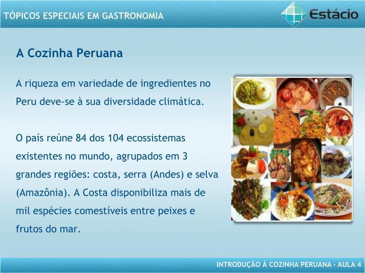 A Cozinha Peruana