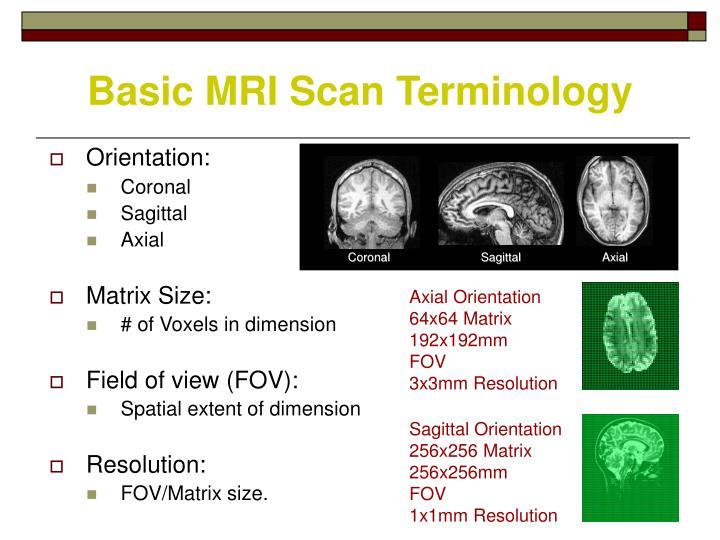 Basic MRI Scan Terminology