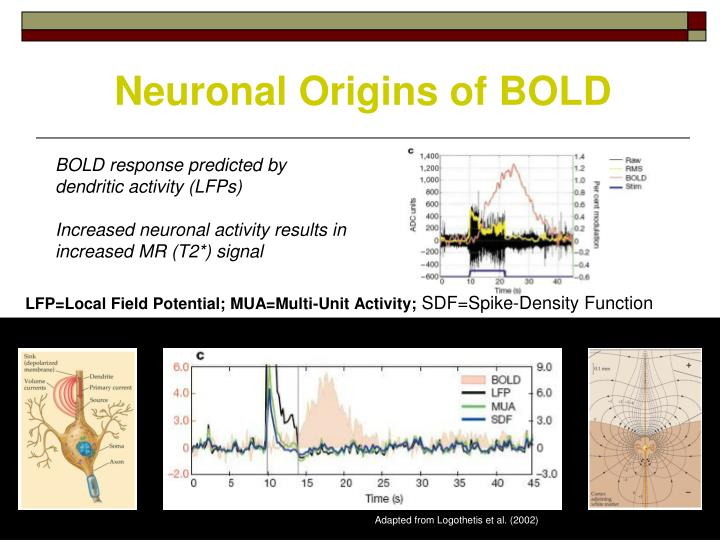 Neuronal Origins of BOLD