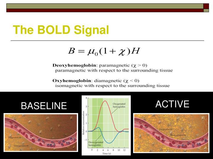 The BOLD Signal