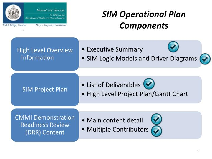 sim operational plan components n.