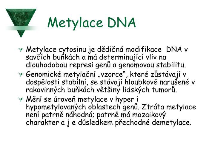 Metylace DNA