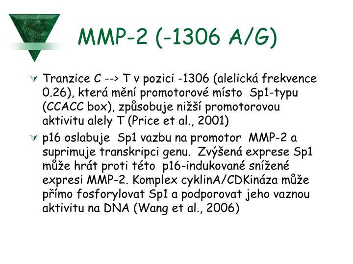 MMP-2 (-1306 A/G)