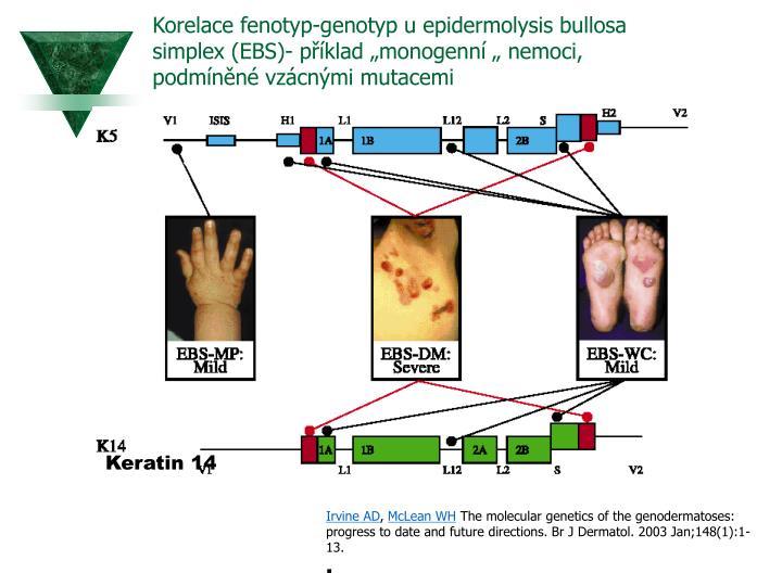 """Korelace fenotyp-genotyp u epidermolysis bullosa simplex (EBS)- příklad """"monogenní """" nemoci, podmíněné vzácnými mutacemi"""