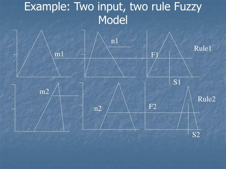 Example: Two input, two rule Fuzzy Model