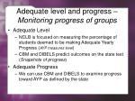 adequate level and progress monitoring progress of groups