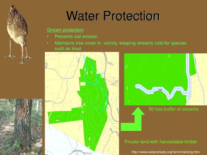Water Protection