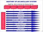 anatomy of an ancillary system