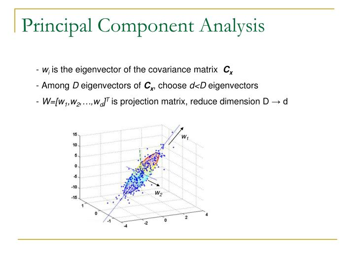 principal components analysis pca versus principal axes The main purposes of a principal component analysis are the analysis of data to identify patterns and finding patterns to reduce the dimensions of the dataset with minimal loss of information here, our desired outcome of the principal component analysis is to project a feature space (our dataset.