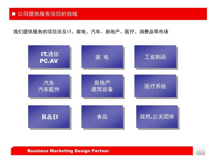 公司提供服务项目的领域