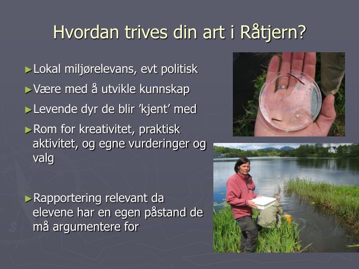 Hvordan trives din art i Råtjern?