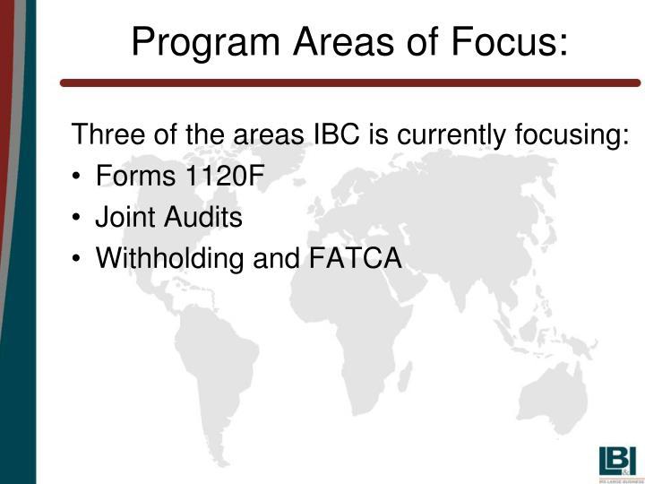 Program Areas of Focus: