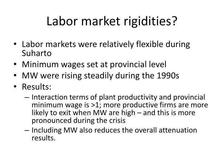 Labor market rigidities?