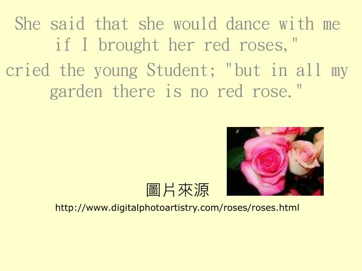 """She said that she would dance with me if I brought her red roses,"""""""