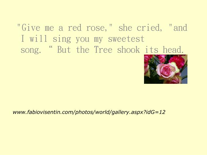 """""""Give me a red rose,"""" she cried, """"and I will sing you my sweetest song."""" But the Tree shook its head."""