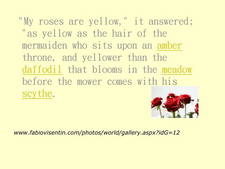 """""""My roses are yellow,"""" it answered; """"as yellow as the hair of the mermaiden who sits upon an"""