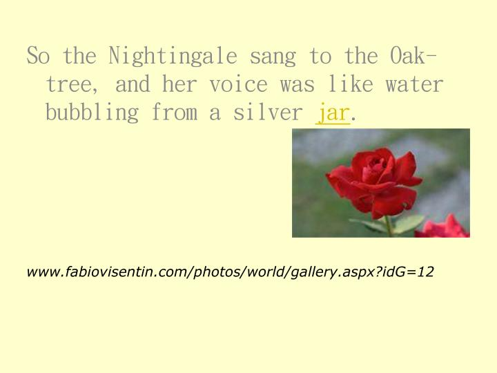 So the Nightingale sang to the Oak-tree, and her voice was like water bubbling from a silver