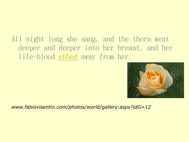All night long she sang, and the thorn went deeper and deeper into her breast, and her life-blood