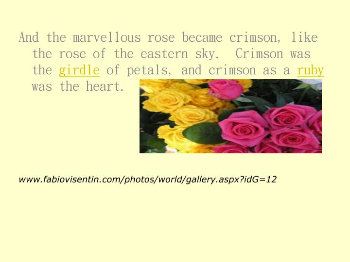 And the marvellous rose became crimson, like the rose of the eastern sky.  Crimson was the