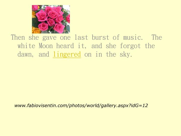 Then she gave one last burst of music.  The white Moon heard it, and she forgot the dawn, and